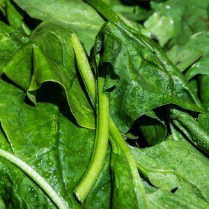 Épinards (500 g)