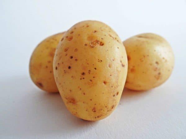 Pomme de terre Bintje Saveurs et Couleurs primeur à Talmont-Saint-Hilaire