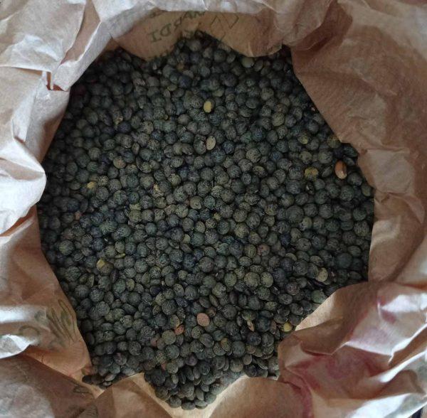 Lentilles vertes Saveurs et Couleurs primeur à Talmont Saint Hilaire