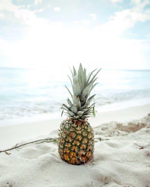 Ananas fruit du mois de janvier chez Saveurs et Couleurs