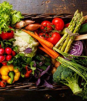 Panier de légumes Saveurs et Couleurs primeur à Talmont Saint Hilaire